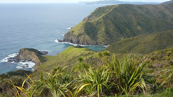 La vegetación invade Cape Reinga en la región Northern de Nueva Zelanda