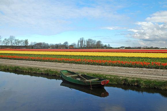PEn el Jardín podremos disfrutar de un tranquilo paseo en barca contemplando los campos de flores de nuestro alrededor