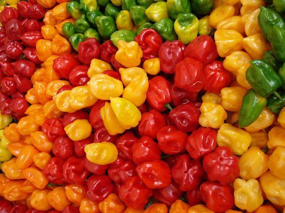 El Habanero es una variedad de chile muy común en México