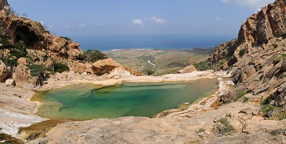 Hermosa fotografía tomada en el archipiélago de Socotra