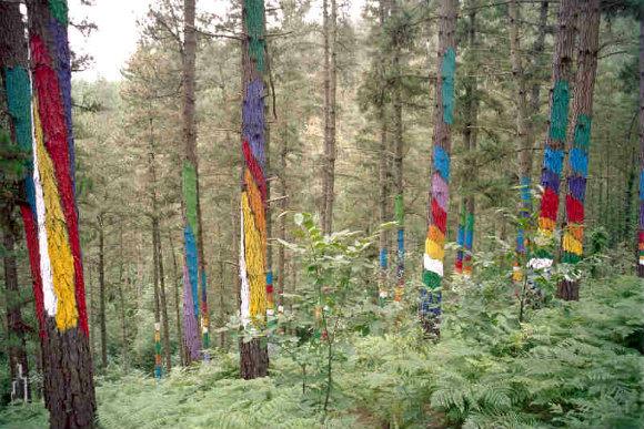 Los colores vivos del bosque de Oma del artista Agustín Ibarrola nos saludan en Urdaibai