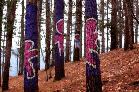 Siluetas saltan por los troncos en el bosque pintado de Oma del artista Agustín Ibarrola