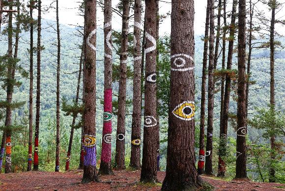 El bosque pintado de Oma está vivo y nos observa desde la distancia