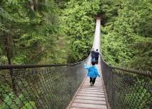 puente Lynn Canyon