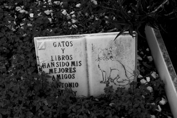 Cementerio Inglés Málaga Bien Interés Cultural