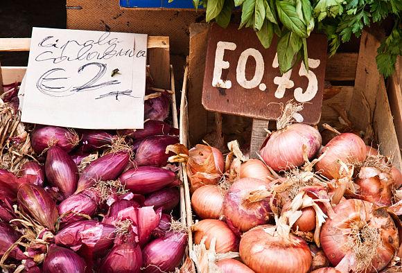 El colorido y el olor de las verduras y hortalizas de la Fiera, nos acompañarán durante nuestro recorrido