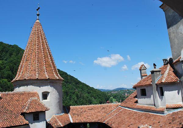 castillo bran torres