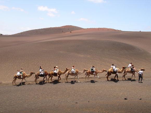 En el Parque Nacional del Timanfaya se pueden realizar paseos a camello