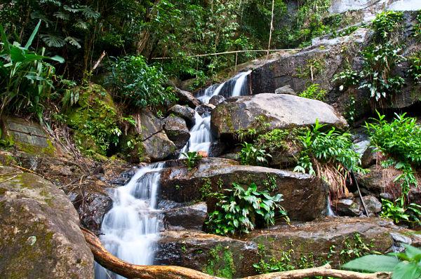 Parque Tijuca cascadas