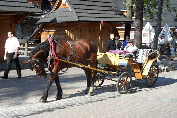 Los carruajes tirados por caballos es otro medio de transporte en Zakopane