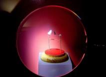 museo miniaturas Micromundi Belesú