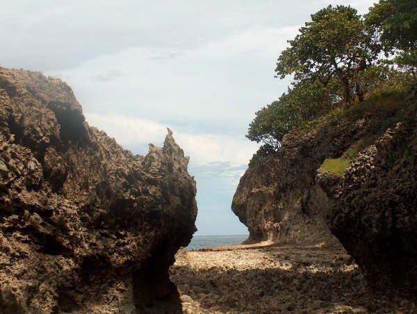 Isla Quiribri Uvita Costa Rica Corales
