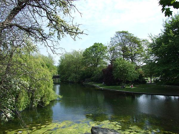 Stephen's Green lago dublin