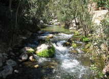 fuentes algar