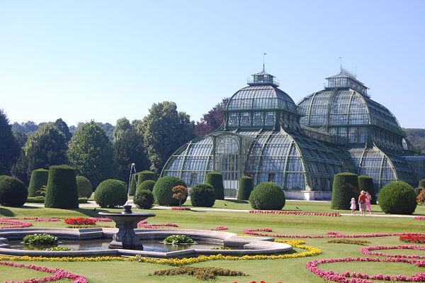 Schönbrunn palmenhaus