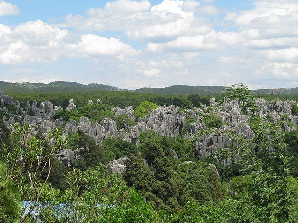 bosque piedra china