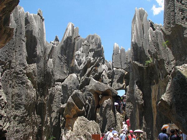 bosque piedra shilin china viajeros