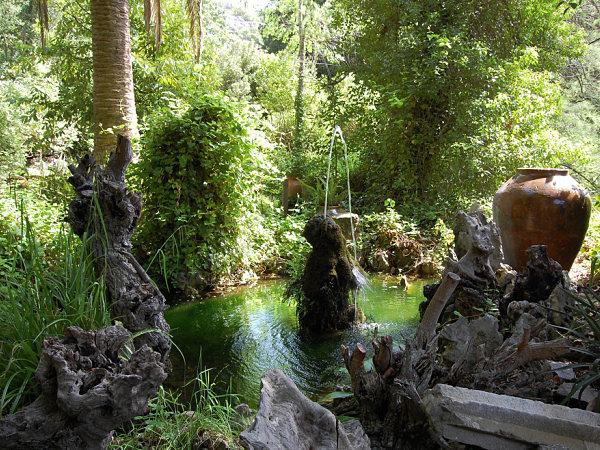 jardin botanico lluc fuentes