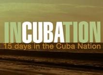 Incubation cuba viaje