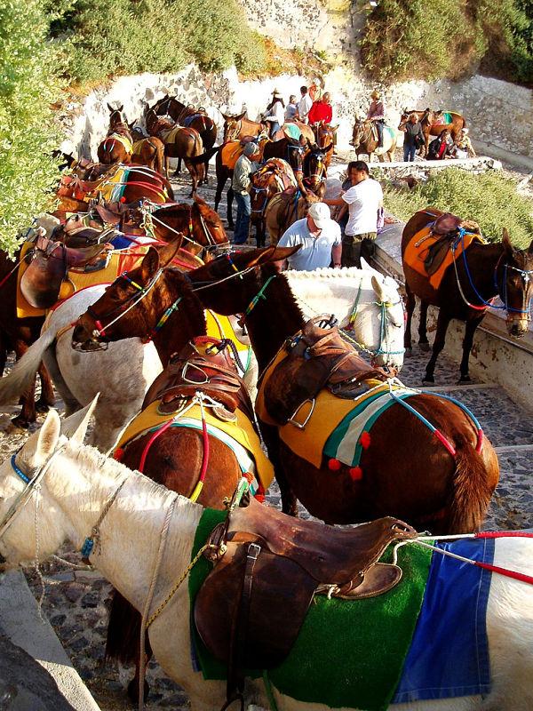 santorini burros fila