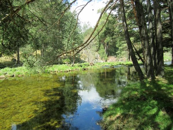 Los ríos cristalinos bañan las tierras de Gredos