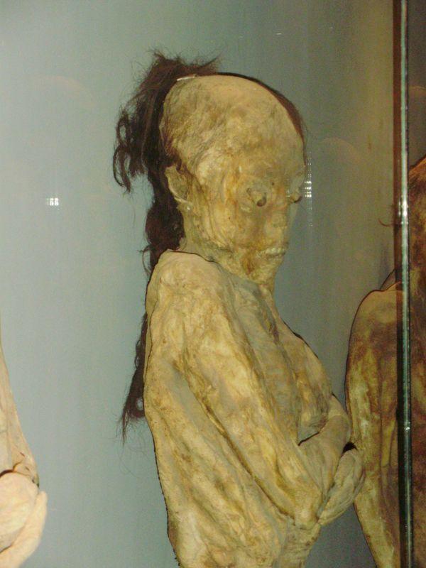 guanajuato momias