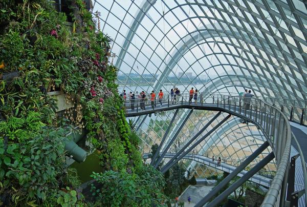Los jardines de la bah a de singapur for Invernaderos de jardin