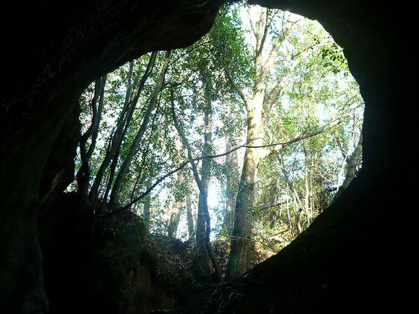 cuevas andia historia