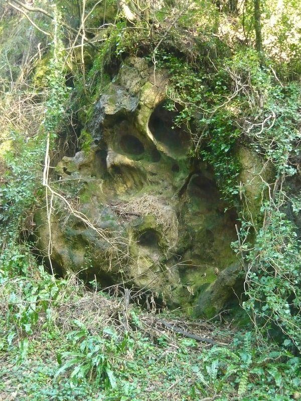 cuevas andia