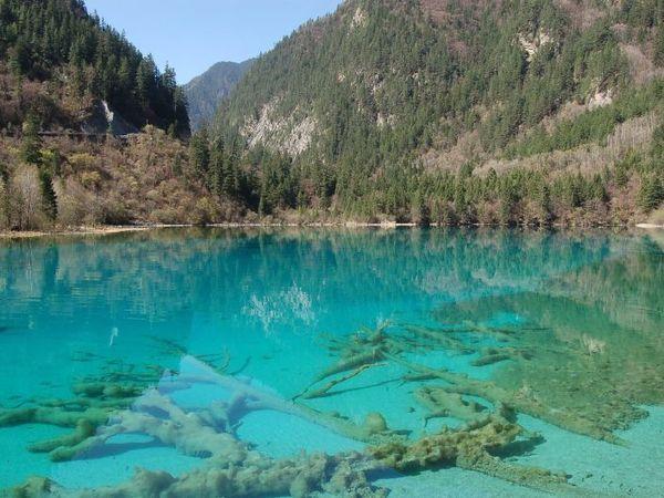 lago cinco flores China