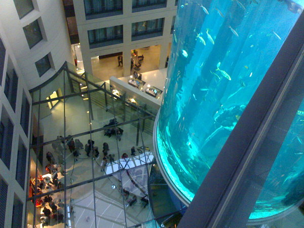 AquaDom Berlin acuario