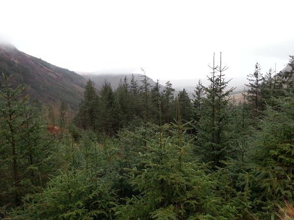 West Highland Way Fort Williams