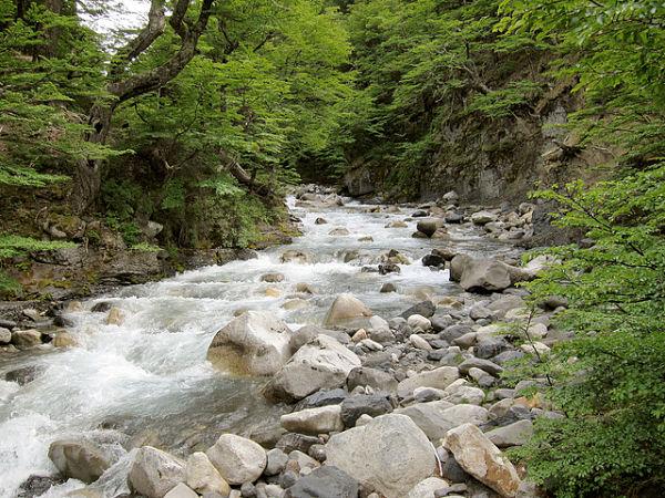 parque nacional torres paine río