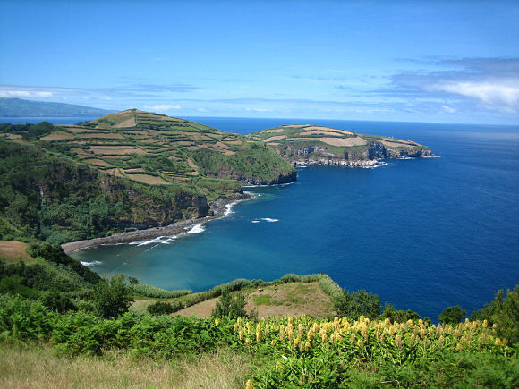 El archipiélago de las azores forma un gran bosque en mitad del Océano Atlántico