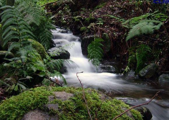 Fotografía de una de las bonitas cascadas del Parque