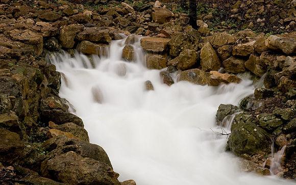 Vista de uno de los espectaculares brotes de agua de la Finca Gabellí Petit