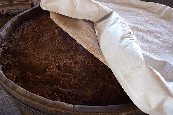 Al elaborar el mezcal, después de haber triturado la piña se deja fermentando