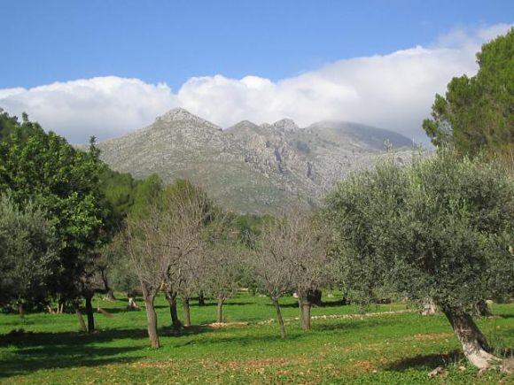 Paisaje cultural y natural de la Sierra de Tramontana de la isla de Mallorca