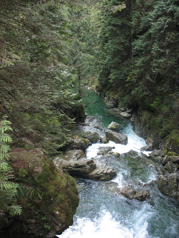 Lynn Canyon twin falls