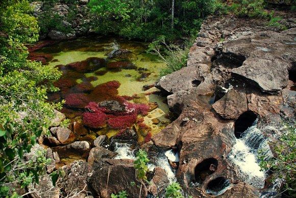 Las rocas, el agua y los colores se mezclan en el río Caño Cristales