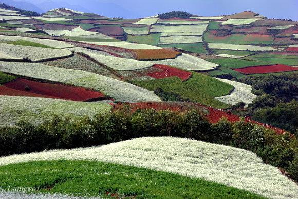 La Tierra Roja de Dongchuan en Yunnan, China, es un romántico lugar en el que perderse
