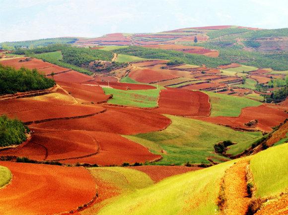 Las laderas de las montañas se prestan al cultivo en la Tierra Roja de Dongchuan