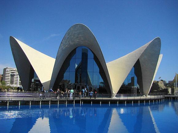 El Oceanográfico es el lugar más impresionante de todo el complejo de las Artes y las Ciencias de Valencia