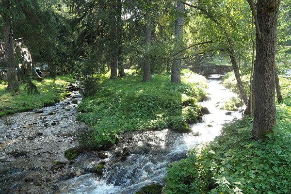 Uno de los varios arroyos que serpentean Kalatówki a la altura de Kuznice