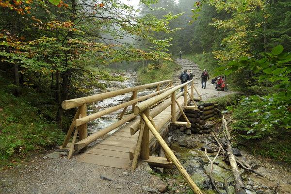 Uno de los coquetos puentes de madera de los montes Tatra en Kalatówki