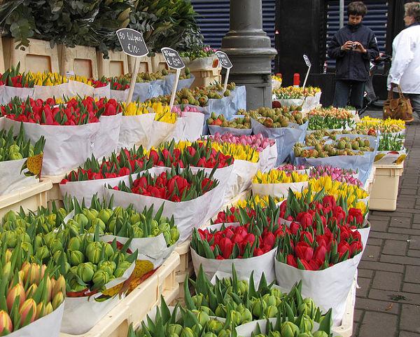 mercado flores bloemenmarkt tulipanes