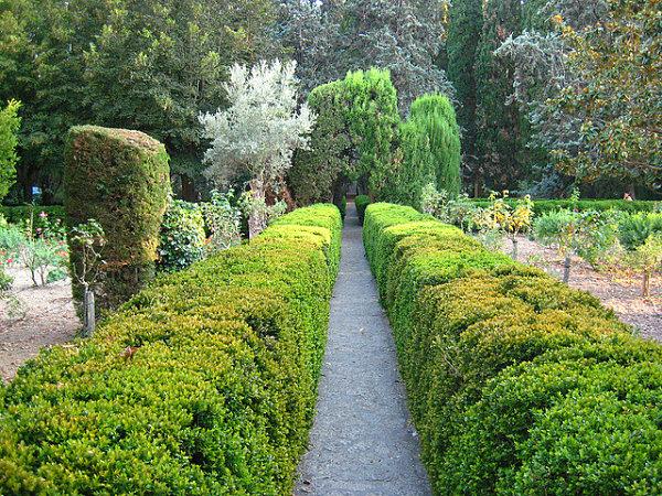 cartuja valldemossa jardines