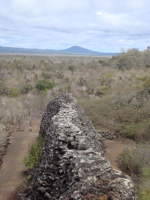 muro de las lagrimas isabela galapagos