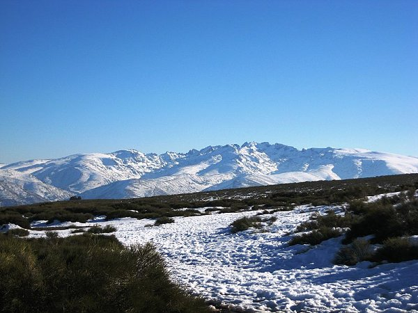 Sierra de Gredos Peñanegra