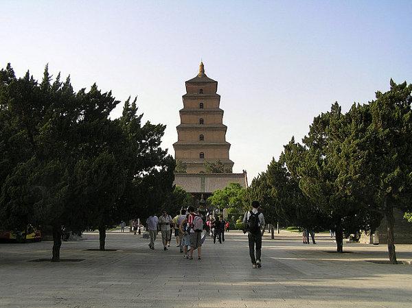 gran pagoda oca salvaje